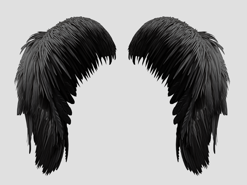 Free Black Wings PNG (Isolated.