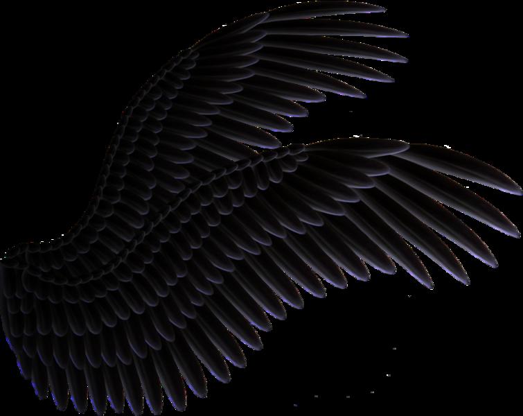 Black Wings (PNG).