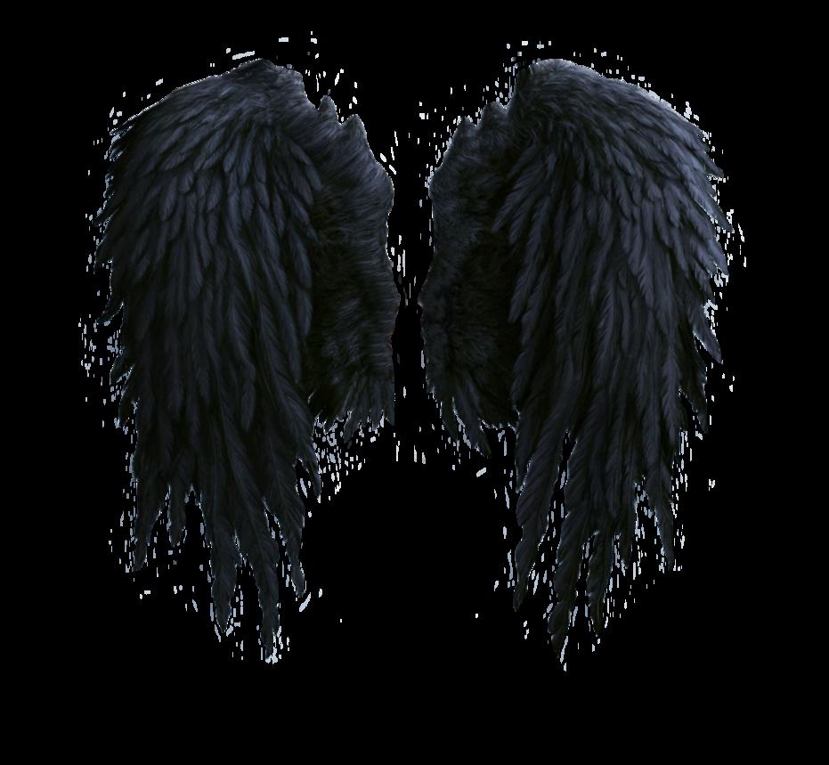 Black Wings PNG Image.