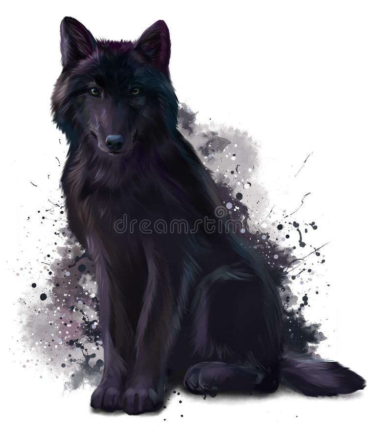 Black Wolf Stock Illustrations.