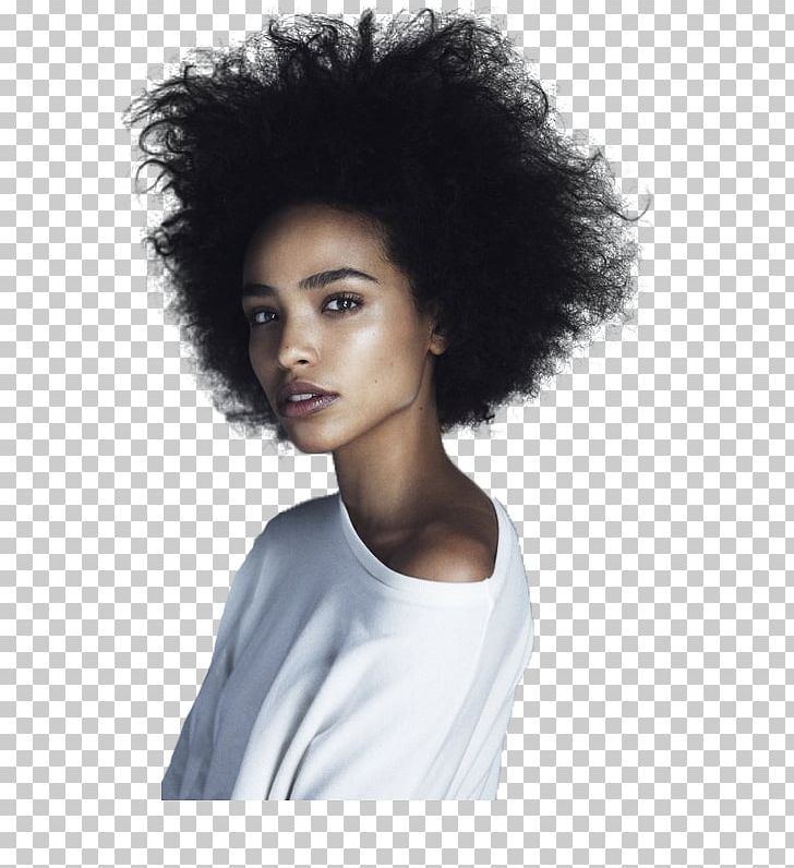 Afro Black African American Female Woman PNG, Clipart.