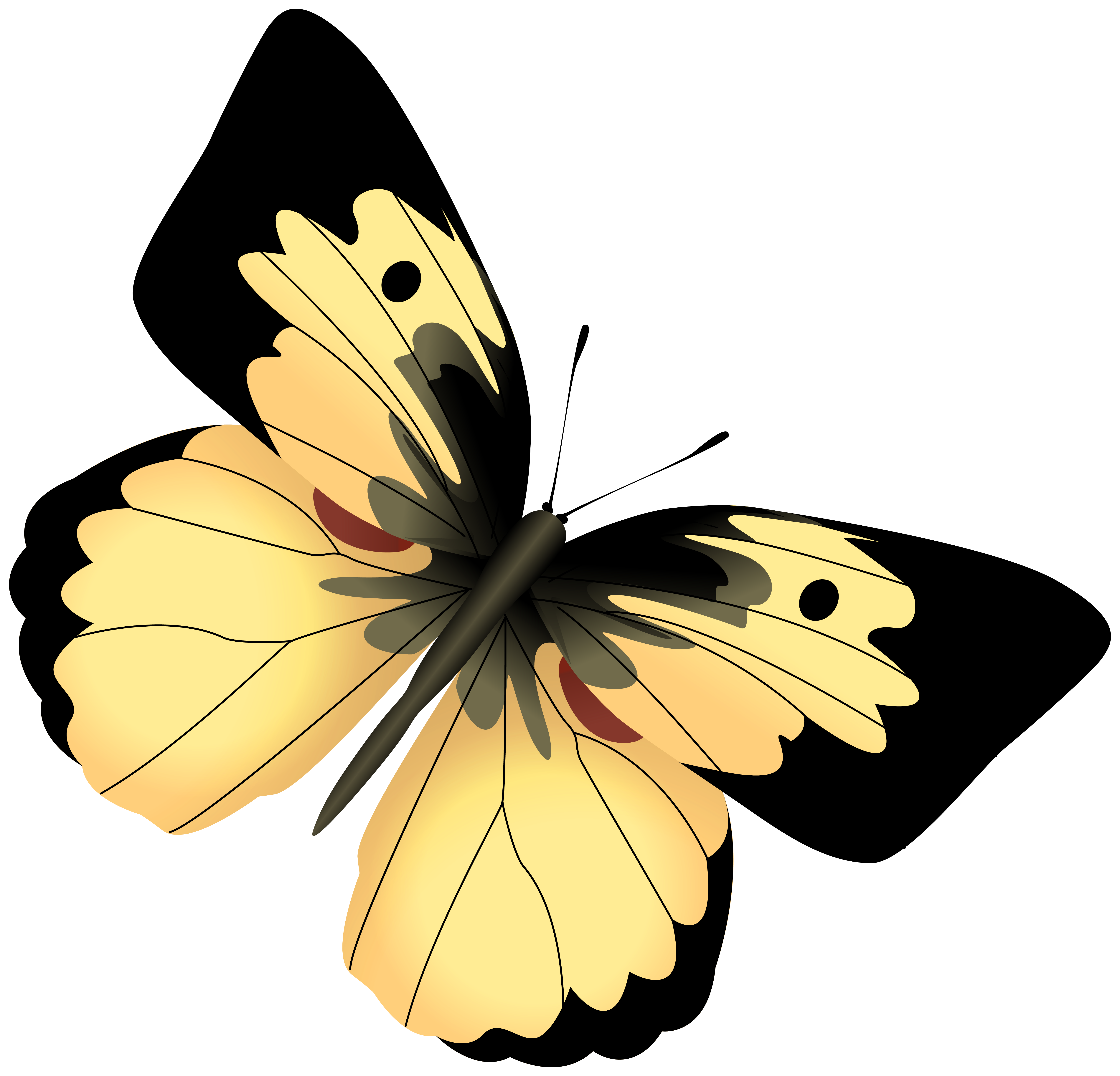 Yellow and Black Butterfly PNG Clipart Image.