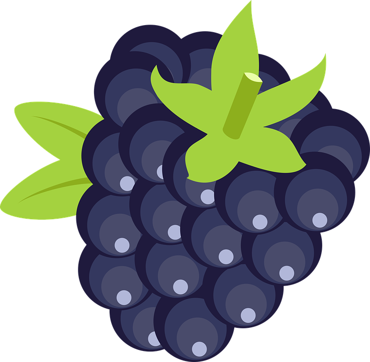 Blackberry PNG Clipart Image With Transparent Background #1.