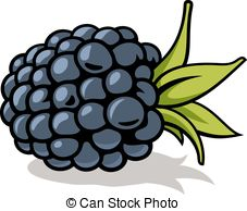 Blackberries Illustrations and Stock Art. 3,308 Blackberries.