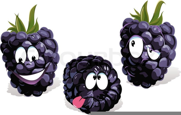 Blackberry Clipart Free.
