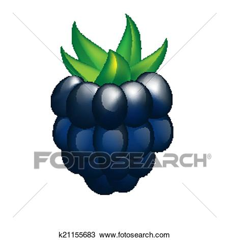 Blackberry Clipart.