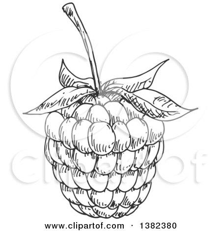 Clipart of a Cartoon Blackberry.