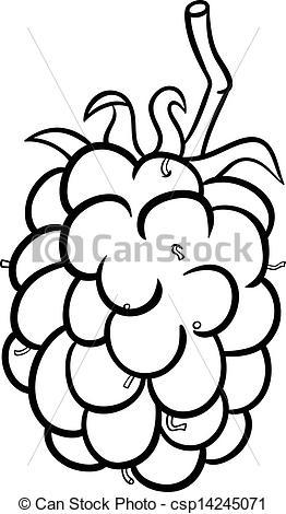 Vectors Illustration of blackberry illustration for coloring book.