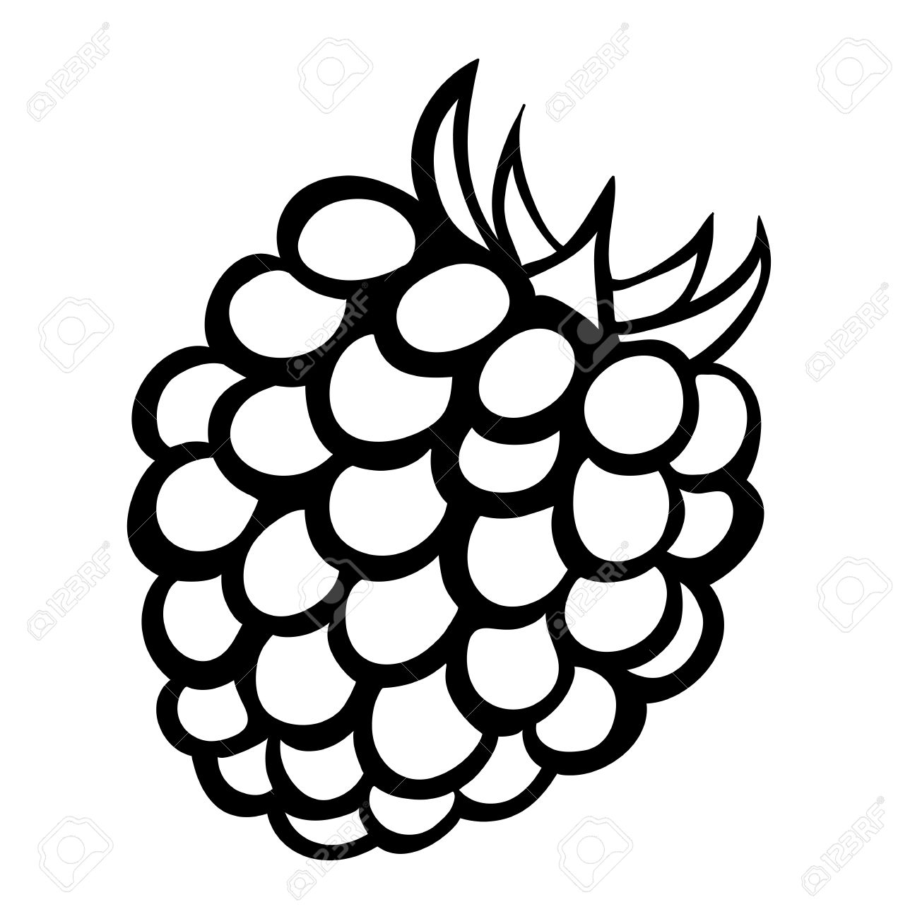 5,683 Blackberry Cliparts, Stock Vector And Royalty Free.