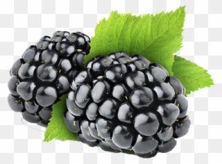 Free PNG Blackberries Clip Art Download.