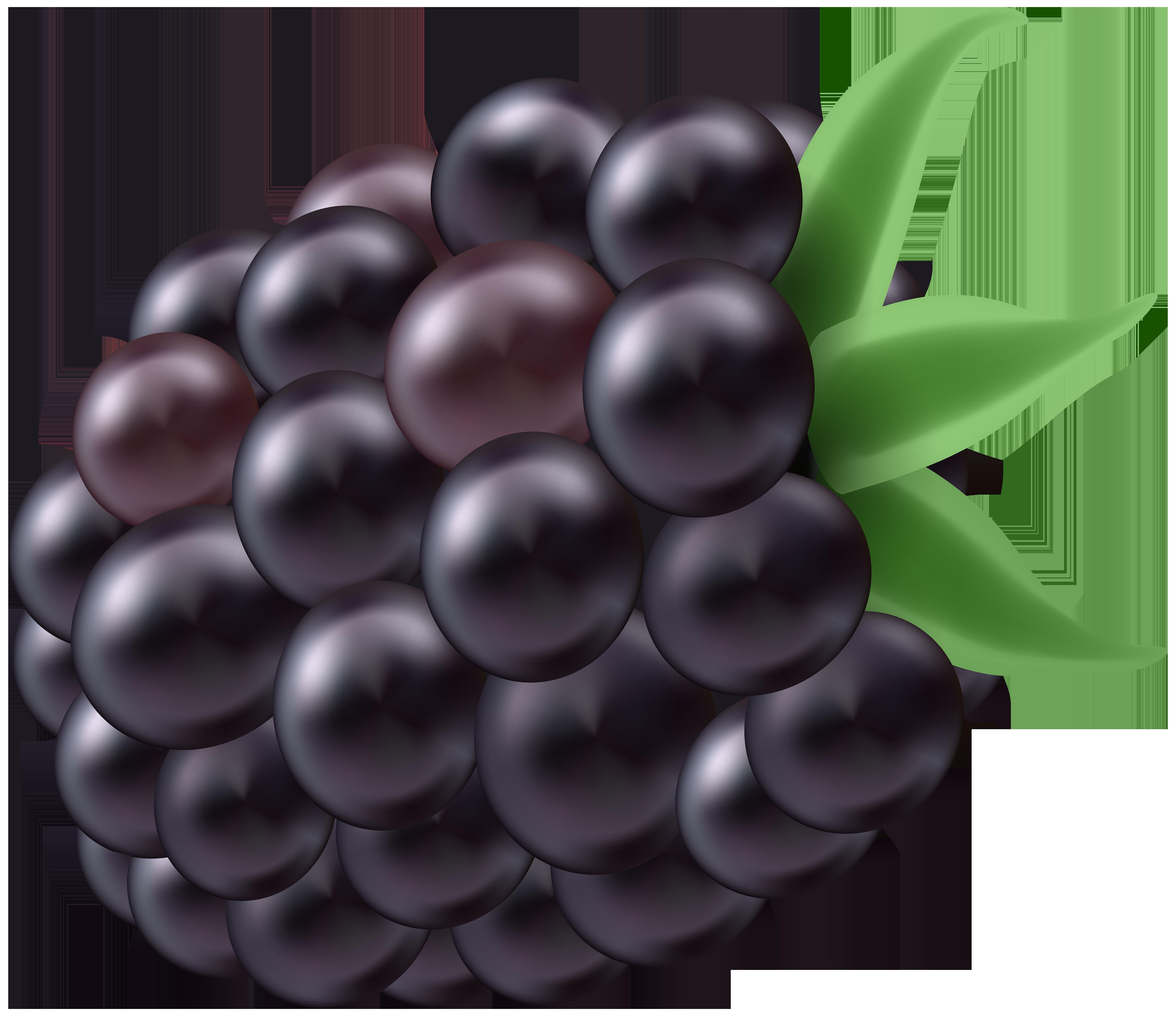 Blackberry PNG Clip Art Image.