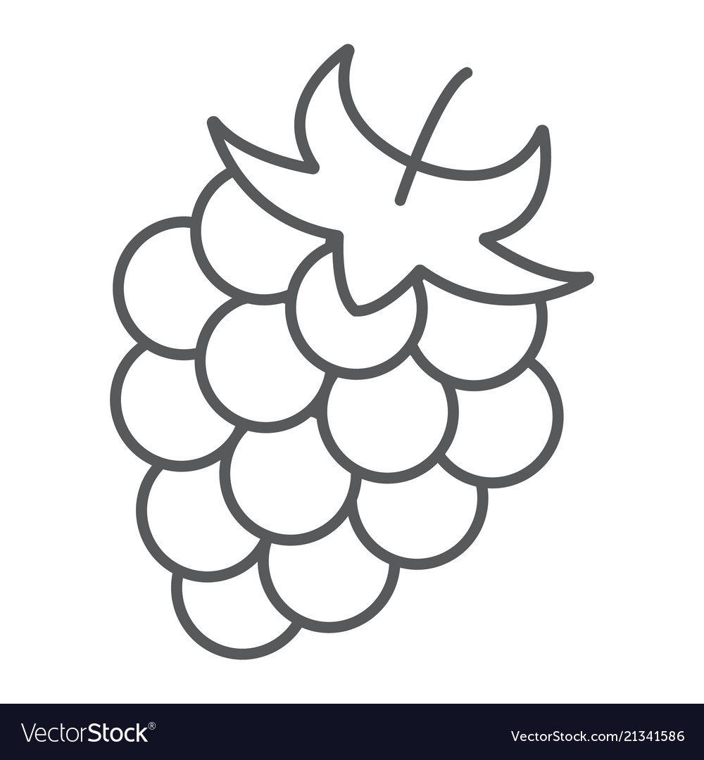 Blackberry thin line icon fruit and vitamin.