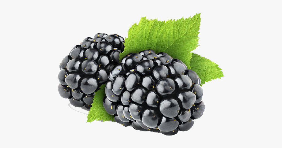 Blackberry Fruit Clipart Png.