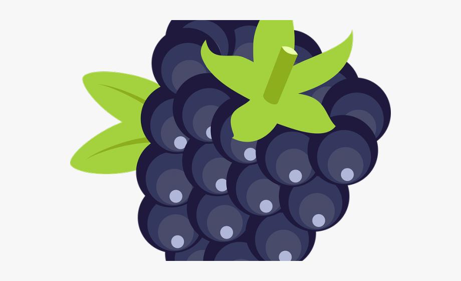 Blackberry Clipart Blue Fruit.