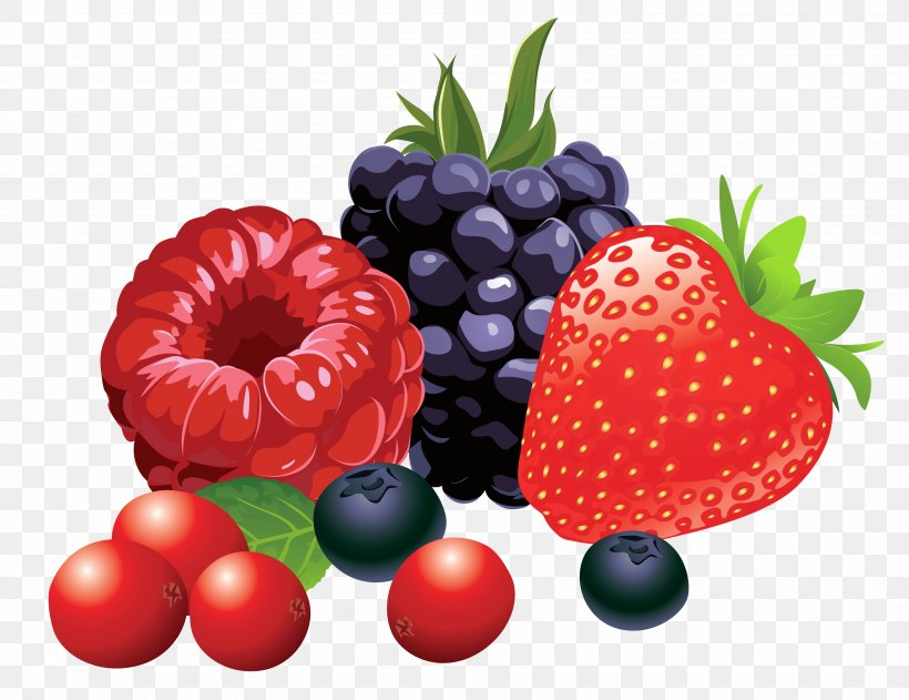 Berry Fruit Clip Art, PNG, 3480x2681px, Berry, Blackberry.