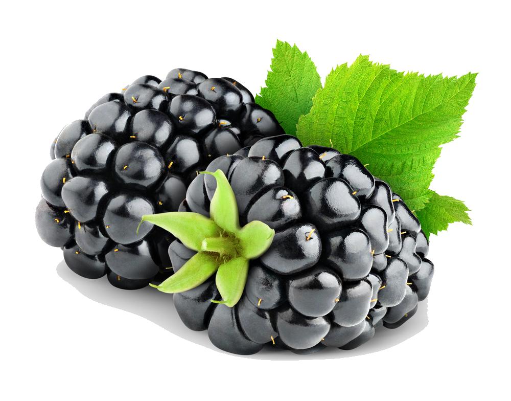 Download Free png Blackberry Fruit Png.