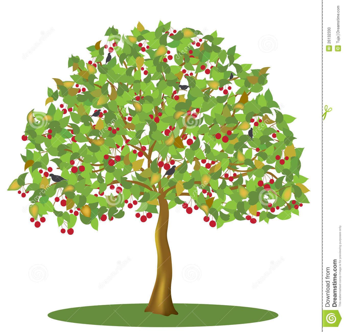 Berries on a tree clipart.