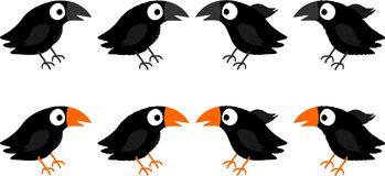 Blackbirds Stock Illustrations.