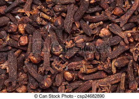 Stock Photographs of Black brown seed clove(laung india.