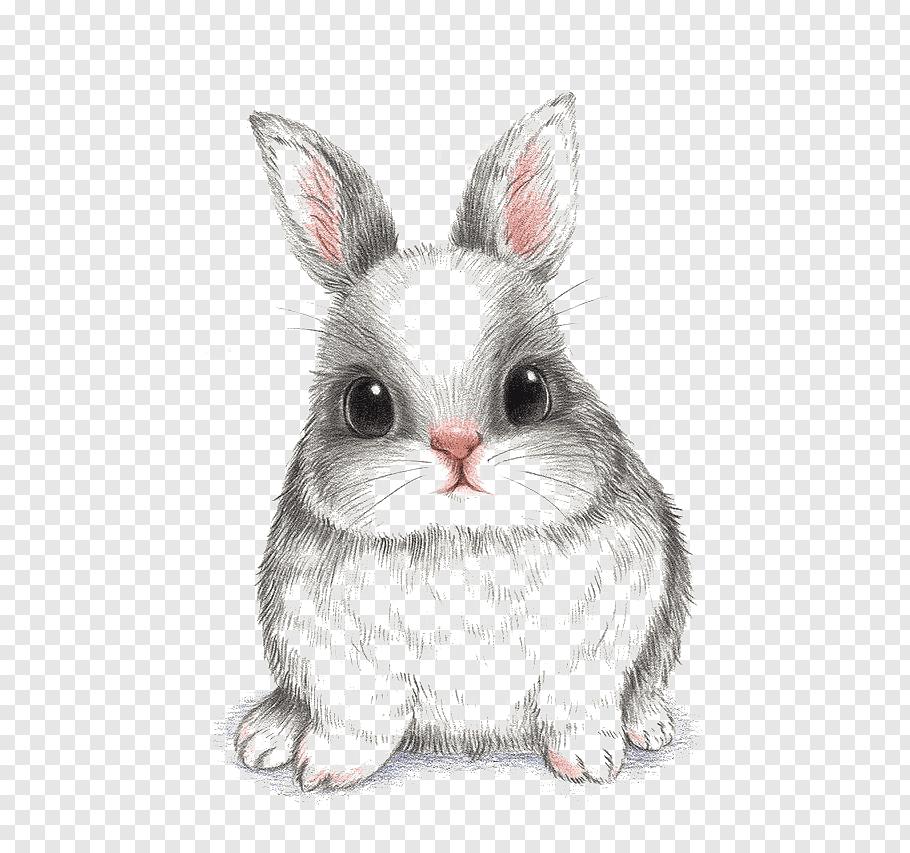European rabbit Drawing, rabbit, black bunny painting free.