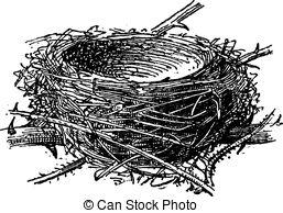 Blackcap Illustrations and Stock Art. 5 Blackcap illustration and.