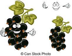 Blackcurrants Illustrations and Stock Art. 242 Blackcurrants.