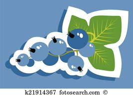 Black currant Illustrations and Clipart. 142 black currant royalty.