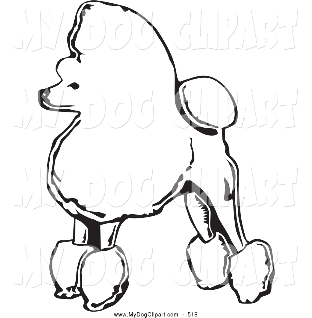 Clip Art of a Cute and Fancy Toy Poodle Dog Standing in.