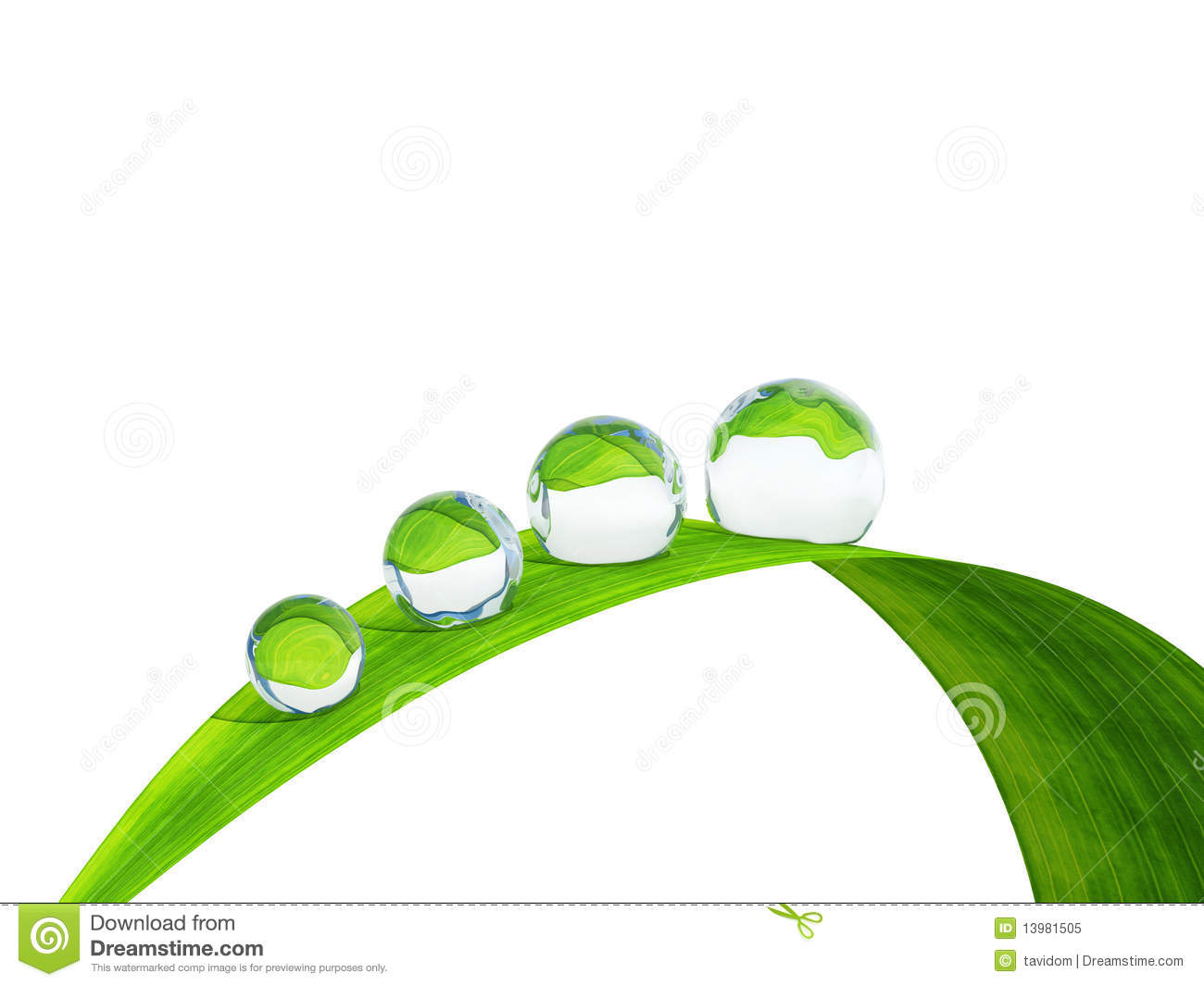 Waterdrop On A Blade Of Grass. Royalty Free Stock Photo.