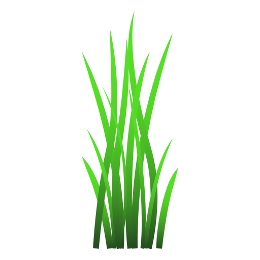 15 Blades of grass png for free download on Premium art themes.