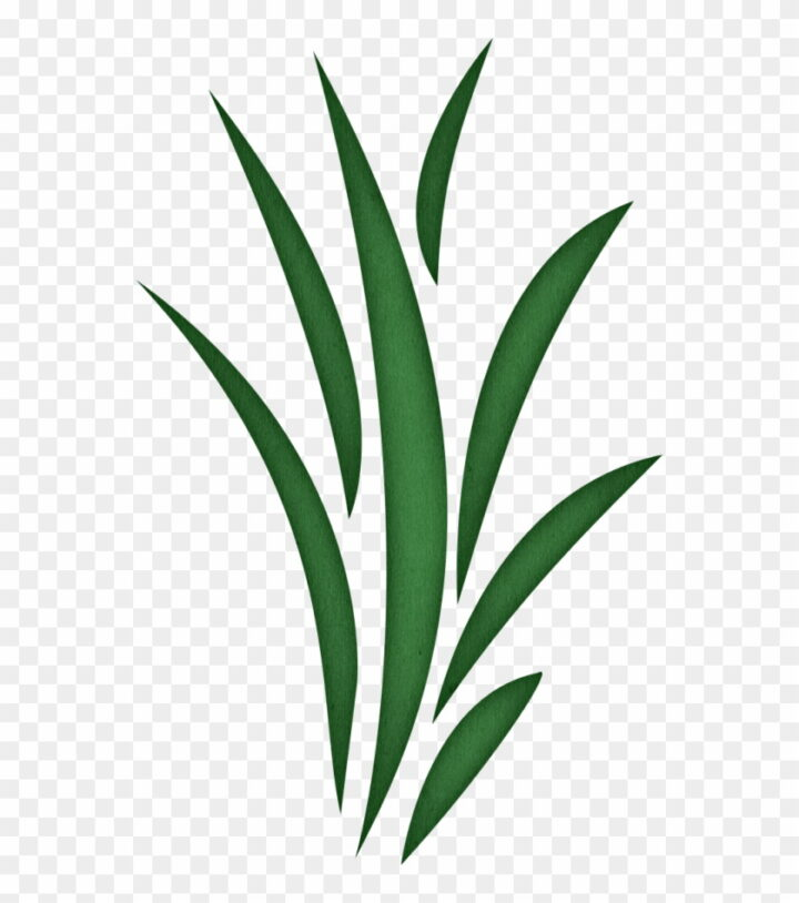 Seaweed Free Grass Clipart Clip Art Library Grass Blade Clip.