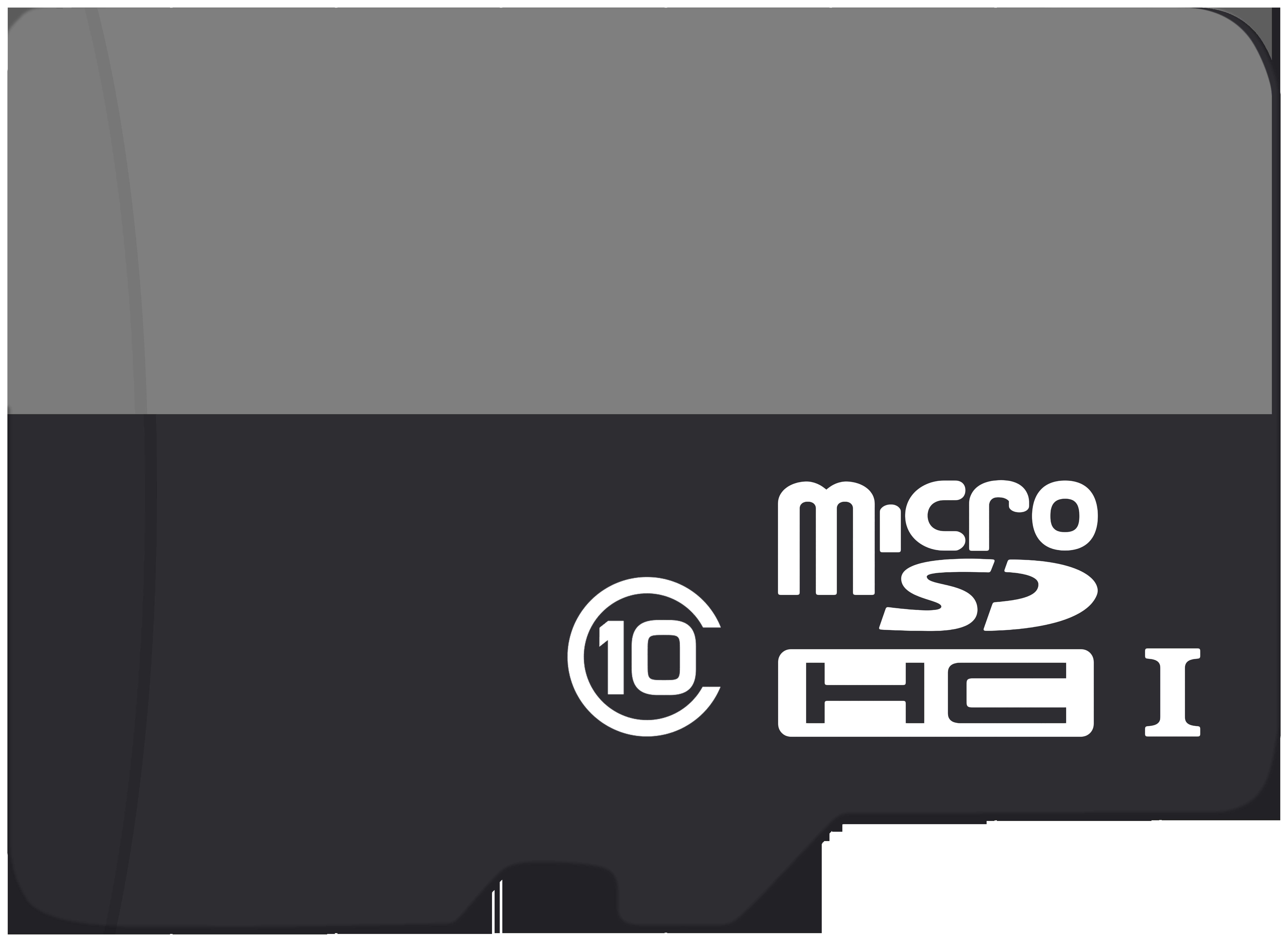 Blank Micro SD Flash Memory Card PNG Clip Art.