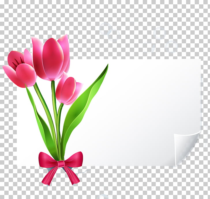 Greeting card Wedding invitation YouTube E.