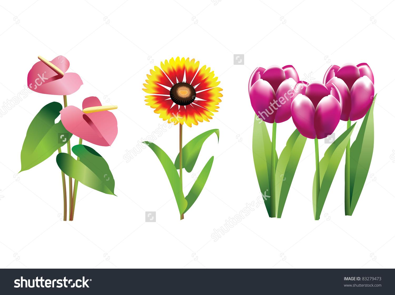 Blanket Flower Clip Art.
