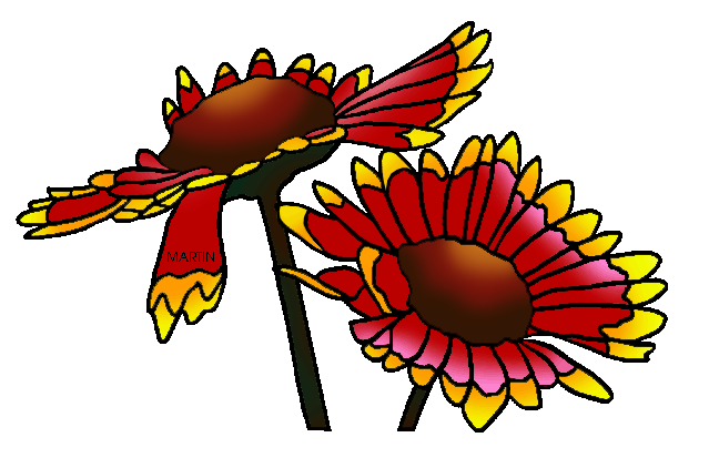 Blanket Flower Clip Art.