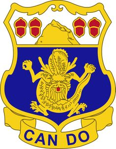 U.S. Army Special Troops Battalion, 48th Infantry Brigade Combat.