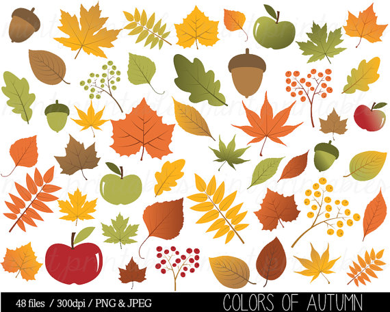 Autumn Leaf Clipart Fall Leaves Clip Art by mintprintables on Etsy.