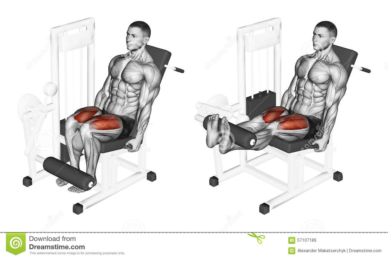 Exercising. Extension Of Hands In A Block Simulator Muscles Biceps.