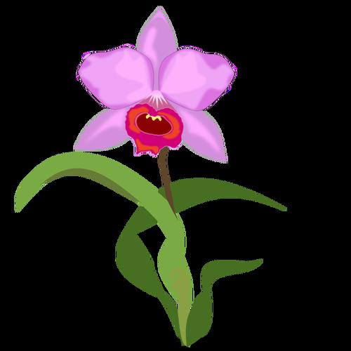 1626 bloem gratis clipart.