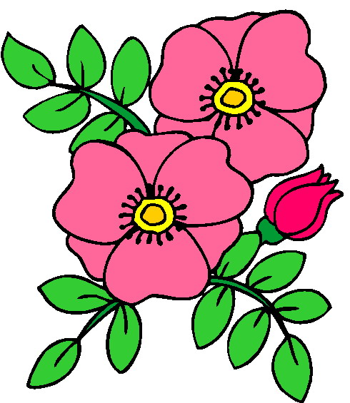 clipart plants and flowers #2
