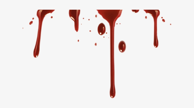 Realistic Blood Drip Png Vector Stock.