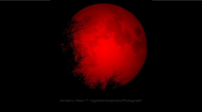 blood moon Archives.