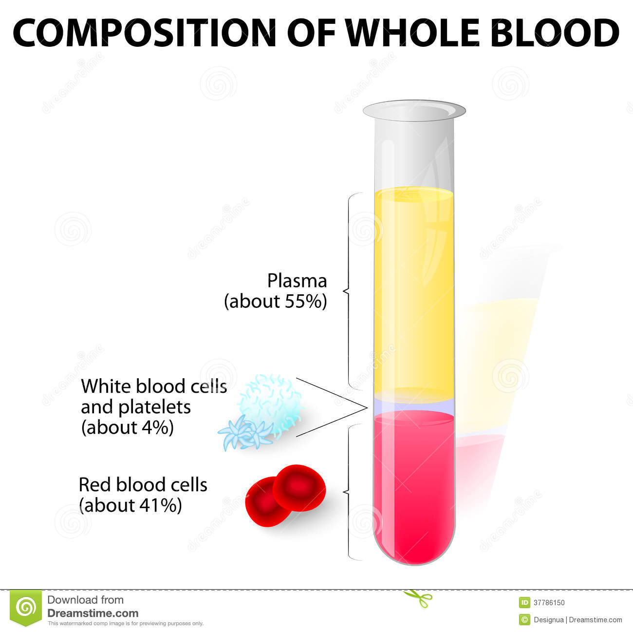 Blood Stock Illustrations.