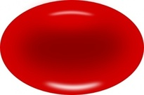 Red Blood Cell Diagram for Kid Clip Art Download 1,000 clip arts.