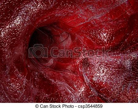 Blood vessel Illustrations and Clip Art. 3,659 Blood vessel.