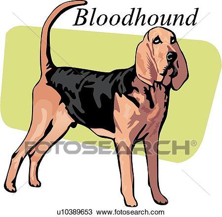 Bloodhound Clipart.