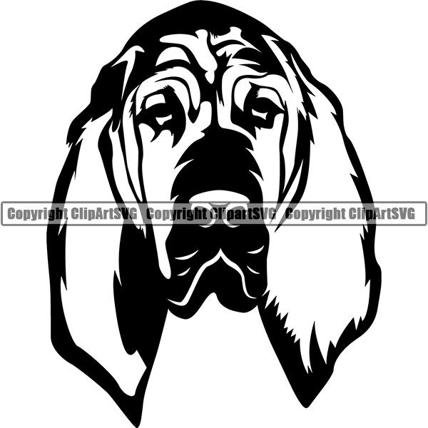 Bloodhound Dog Breed Head Face ClipArt SVG.