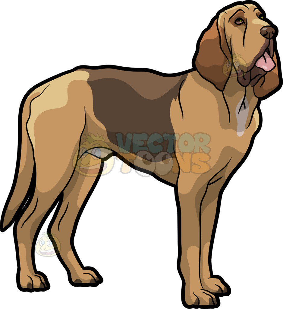 Bloodhound clipart 7 » Clipart Portal.
