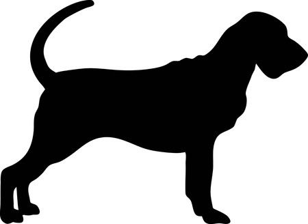 451 Bloodhound Stock Vector Illustration And Royalty Free Bloodhound.