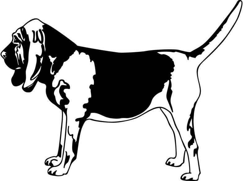 Bloodhound Cliparts.